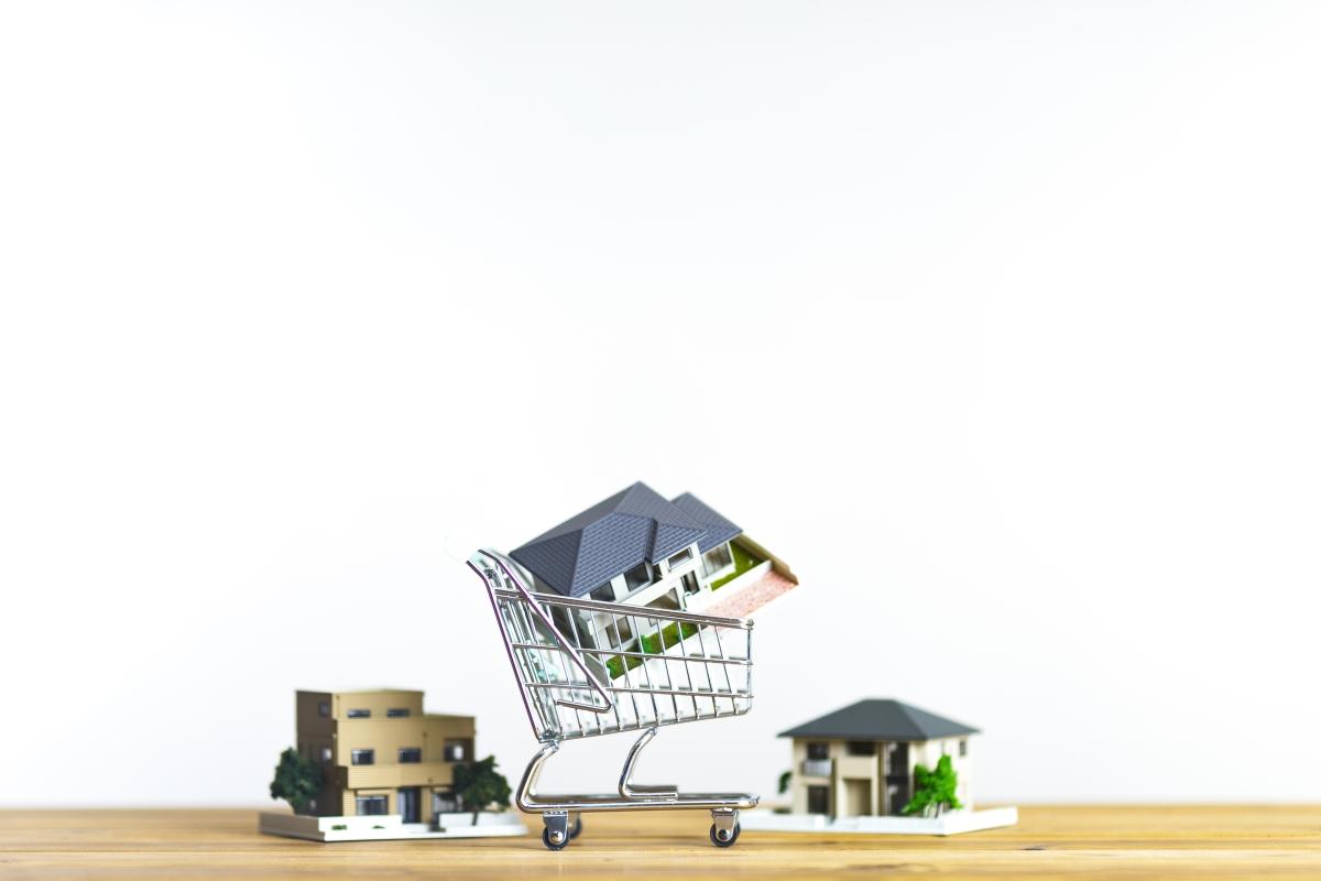 ショッピングカートに入った住宅の模型